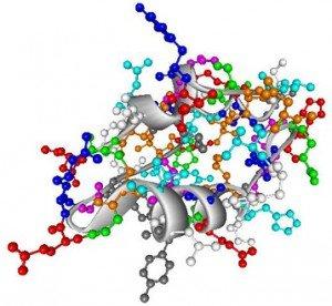 proteines image
